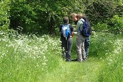 Volunteers carrying out a botanical survey