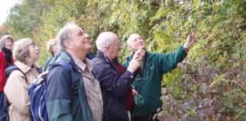 Hedgerow surveyors