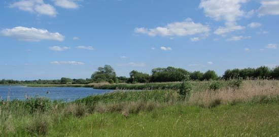 Grassland and lake in the Lower Windrush Valley